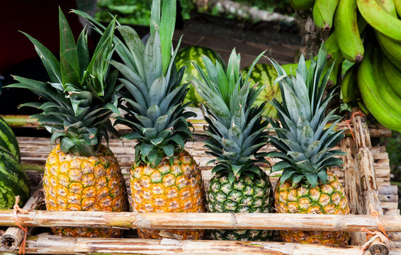 Pineapple on a market in Costa Rica at the Caribbean