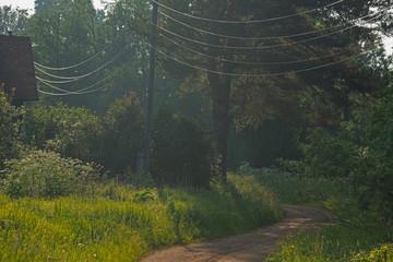 LANDSCAPE - rural landscape