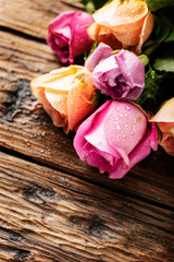 Wall Mural - Mix of pink roses