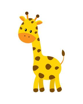 Cute cartoon giraffe vector illustration isolated on white backg