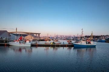 Winter in the harbor