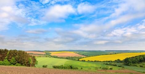 Grandiose vistas of colorful spring fields