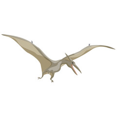 Pteranodon. Pterodactyl. Dinosaur. Prehistoric animals. Vector of the Mesozoic or Jurassic.