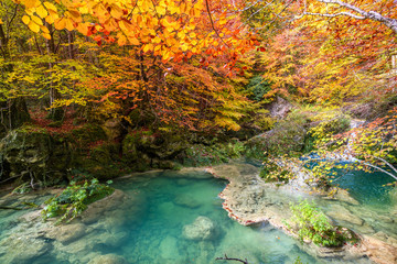 autumnal landscape at Urederra source, Spain