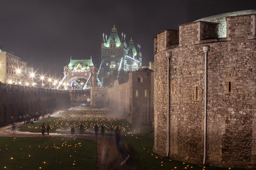 The Tower Of London Remembers - 2018