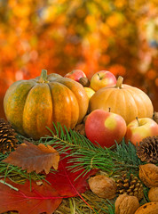 image of pumpkin, nuts, apples and autumn leaves