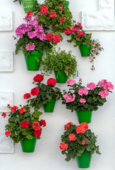 White wall decorated with flower pots