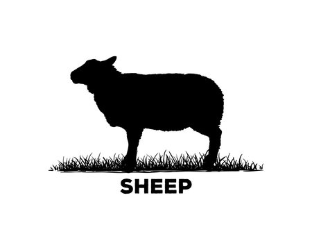 Silhouette Vector Black Sheep Sign Symbol Icon Animal Livestock Logo Template Design Inspiration