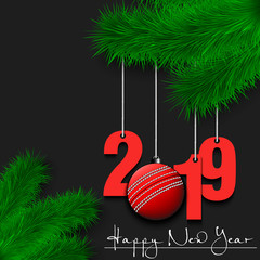 Cricket ball and 2019 on a Christmas tree branch