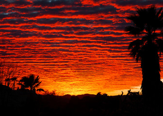 Red Sunset Clouds in Desert