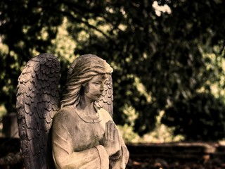 Angel statue in a cemetery.