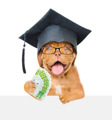 Graduated dog with money over white banner. isolated on white background