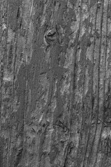 black and white background. peeling paint on an old wooden floor