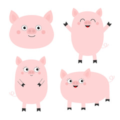 Pig piglet set. Cute cartoon funny baby character. Hog swine sow animal. Chinise symbol of 2019 new year. Zodiac sign. Flat design. White background. Isolated.
