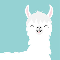 Llama alpaca head face. Tooth smile. Cute cartoon funny kawaii character. Childish baby collection. Fluffy hair fur. T-shirt, greeting card, poster template print. Flat design. Blue background.