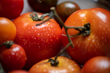 Close up of fresh organic tomatoes
