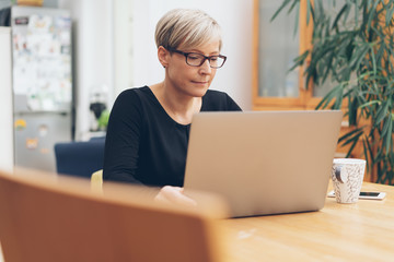 Middle aged woman working at laptop computer