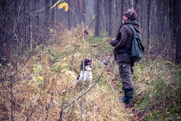 male hunter, in the forest, with arms, dog Springer Spaniel, hunting, autumn