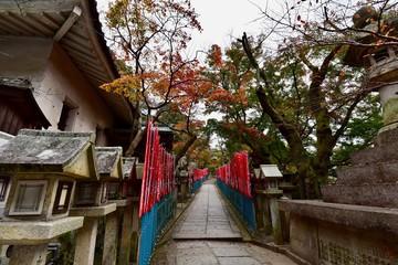 奈良と大阪の寺と神社の紅葉