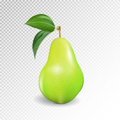 Pear realistic. Vector 10EPS. Green pear, punching bag, punching ball, punchbag, punchball. 3d illustrattion