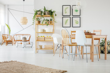 Urban jungle on wooden shelf and floral posters on white empty wall in elegant open plan apartment with natural furniture