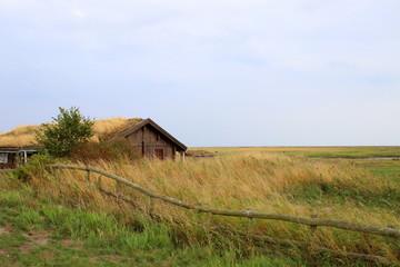 Ostsee, Strand, Urlaub, Erholung, Natur, Küste
