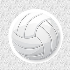 Volleyball white wallpaper