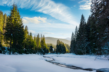 frozen mountain river among the forest in winter. spruce trees and riverbank covered with snow. gorgeous cloudy sky above the distant ridge in evening light