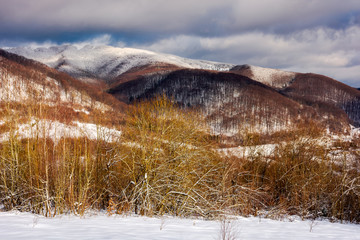 wonderful winter landscape in mountains. sunny day with cloudy sky in the distance above the ridge