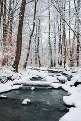 log over the brook in winter forest full of snow. calm nature scenery. brown foliage is present on some trees