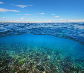Mediterranean sea horizon with buildings and neptune seagrass underwater, split view half above and below water surface, La manga, Cartagena, Murcia, Spain