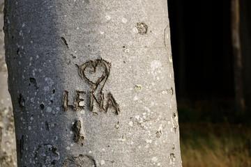 Lena mit Herz im Baumstamm