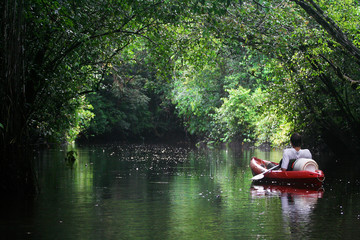 Mystical and beautiful jungle river / stream through green rainforest canopy with a person in red boat. photographed in French Guiana