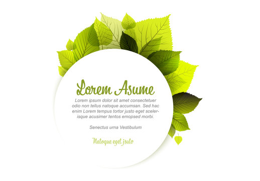 Web Banner Layout with Leaf Illustrations