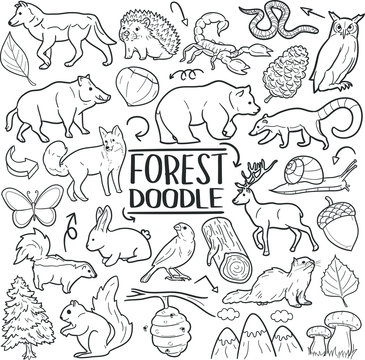 Forest and Mountain Animals Traditional Doodle Icons Sketch Hand Made Design Vector