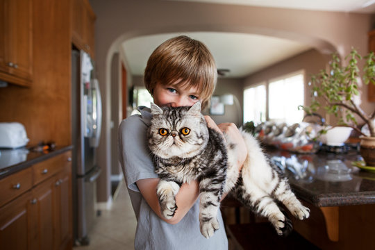 Portrait of boy carrying Persian cat at home