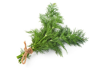 Bunch of fresh, green dill, close-up, isolated on a white background