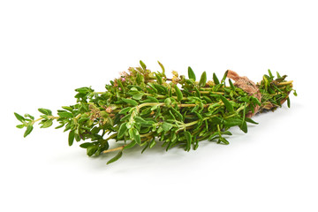 Bunch of Thyme, close-up, isolated on a white background.