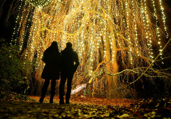 Visitors walk along illuminated objects during the Christmas Garden event at a botanic garden in Berlin