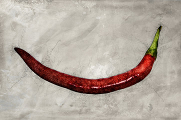 red hot chili pepper scetched