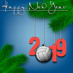 Volleyball ball and 2019 on Christmas tree branch
