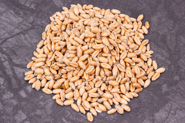 Rye or wheat grains, concept ot rural and agriculture