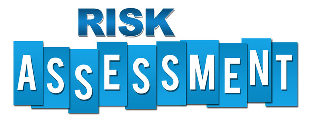 Risk Assessment Professional Blue
