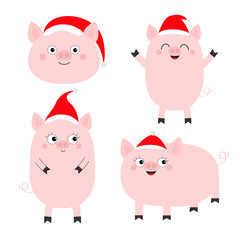 Pig piglet set. Cute cartoon funny baby character. Hog swine sow animal. Santa hat. Chinise symbol of 2019 new year. Zodiac sign. Flat design. White background. Isolated.