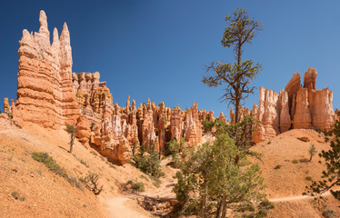 Deurstickers Canyon landscape on the bryce canyon in the united states of america