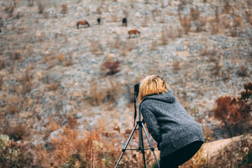 Photographer taking pictures of wild horses on the cliff. Autumn season. Fall colors
