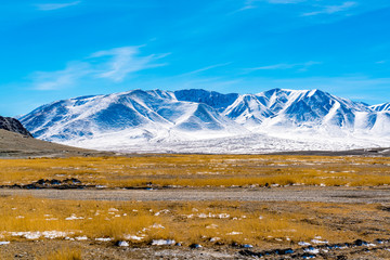 View of beautiful snow mountain with the yellow field and blue sky in Mongolia in summer