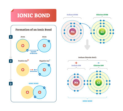 Ionic bond vector illustration. Labeled diagram with formation explanation.