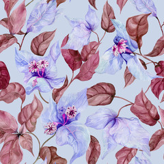 Beautiful fuchsia flowers on climbing twigs on blue background. Seamless floral pattern. Watercolor painting. Hand painted illustration.