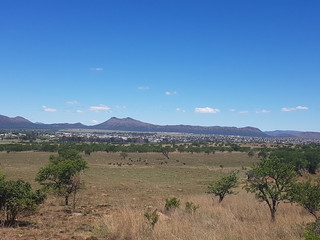 Süd- Afrikanische Savanne
